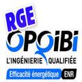 RGE OPQIBI